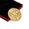 High Quality Professional Metal Custom Gold Coin